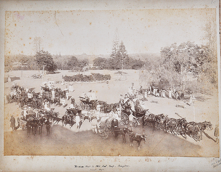 Britishers Gather At Lalbagh Bangalore – Old Photo 1898