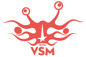 FSM / VSM