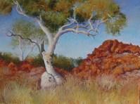Adrianne Kinnear - Snappy Gum, Pilbara