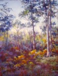 Betty McLean - In the Forest