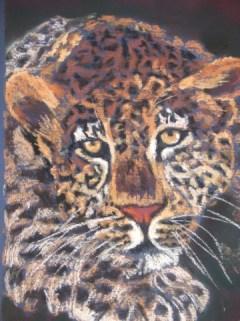 Trudi Nell - Leopard