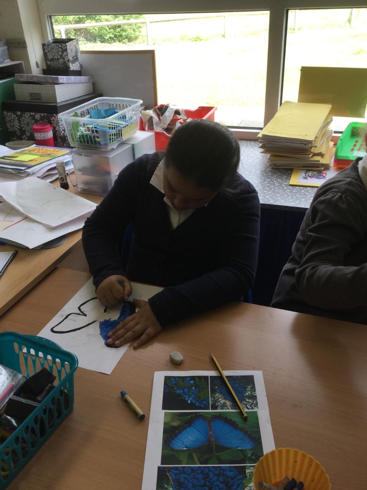 Rainforest Writing Paper Rainforest Teacher Worksheets