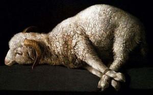 lamb-300x187