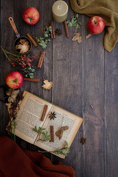 fond photo bois sombre automne