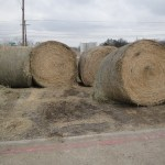 farm ranch supplies-https://www.pasturaslosalazanestx.com