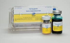 fowl pox vaccine poxine