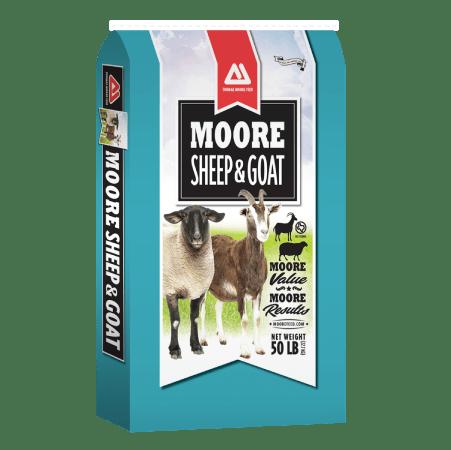 Thomas Moore Sheep & Goat 16 – DQ Medicated