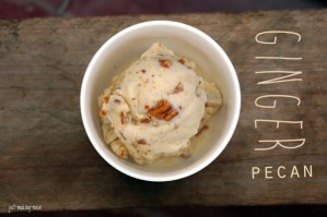 Harvest Your Health Bundle Review: Ginger Pecan Ice Cream