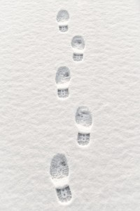 Closeup of multiple footsteps in snow