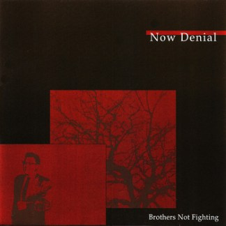 Now Denial - Brothers Not Fighting 7""