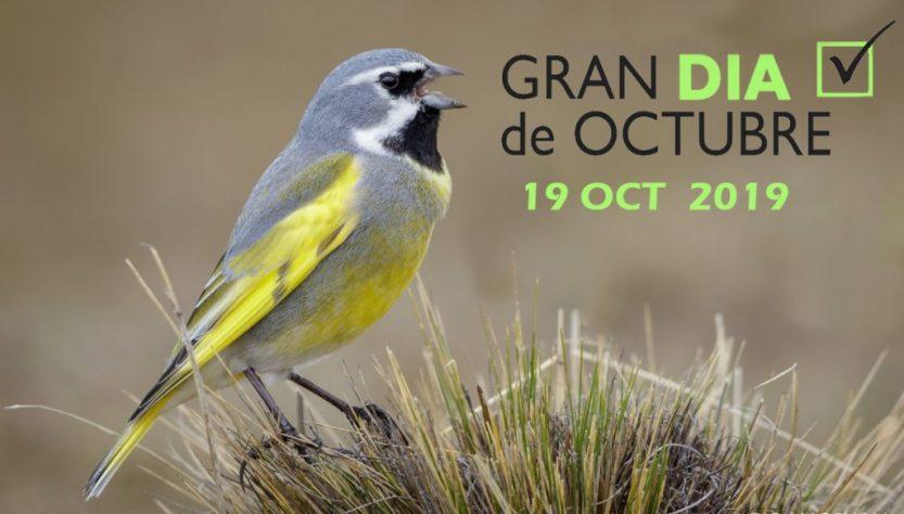 Flyer del Gran Día de Octubre