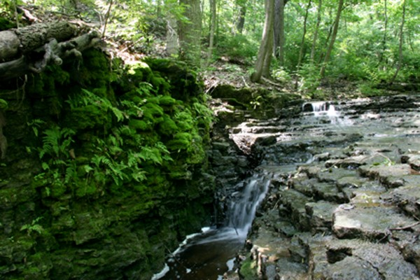 Waterfall at Waterfall Glen, photo courtesy Du Page Forest Preserve District