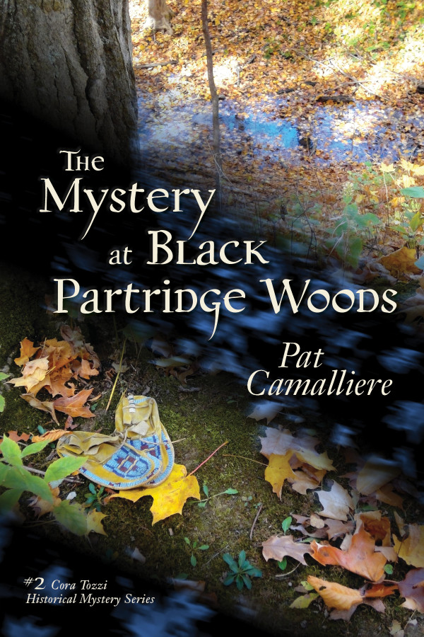 The Mystery at Black Partridge Woods | Pat Camalliere – The