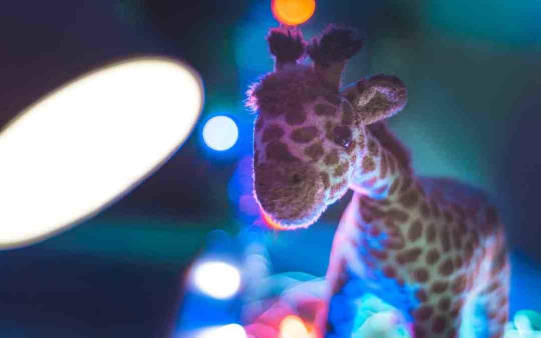 Giraffensprache – GFK für Kinder
