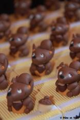 Boîtes à dragées écureuils thème bois et forêt