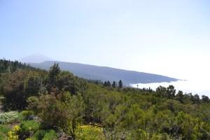 Vistas del Teide desde El Mirador de Mataznos