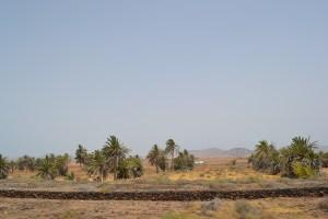 Que ver y hacer en la isla de Fuerteventura
