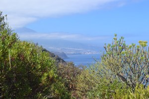 Senderismo en Tenerife - Sendero Las Breñas en El Sauzal