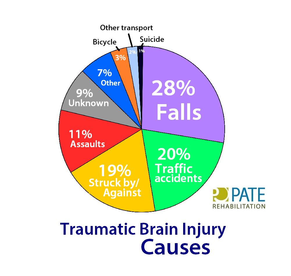 Brain Diagram Tbi - Data Wiring Diagrams •