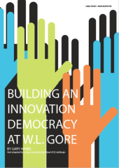 Building an Innovation Democracy at W.L. Gore, 1st Edition, 2016