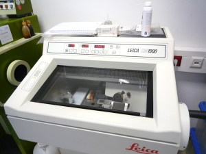 Laborschnellschnitt