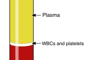 Serum vs. plasma
