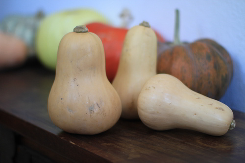 Butternut Squashes and Moveable Feasts
