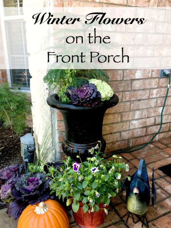 winter-flowers-on-the-front-porch-11