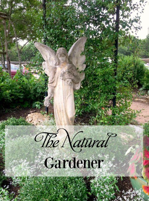 the natural gardener 18