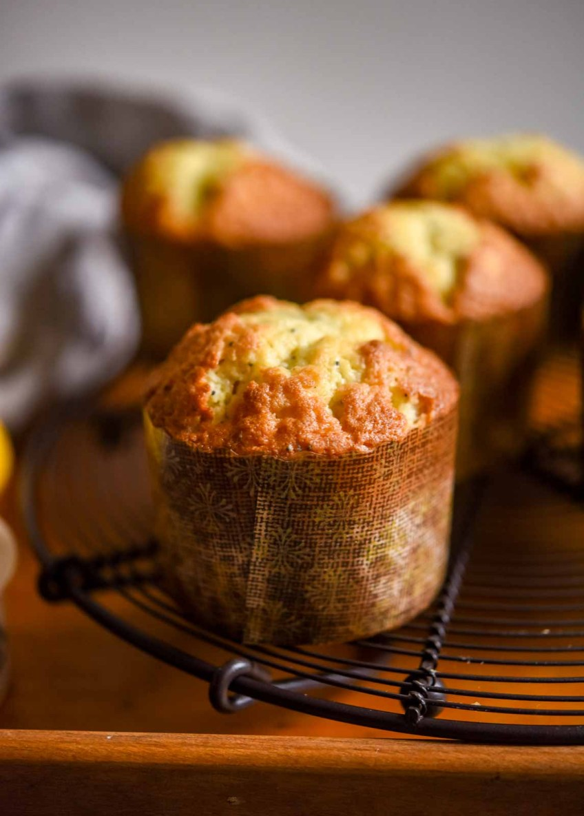 Lemon Poppy Seed Muffins   Patisserie Makes Perfect