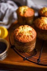 Lemon Poppy Seed Muffin   Patisserie Makes Perfect