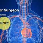 Vascular Surgeon Salary, Job Description, and Training
