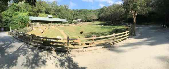 Panorama Photo of Flying Cow Ranch