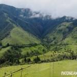Salento y el Valle del Cocora: La belleza que ignoraba