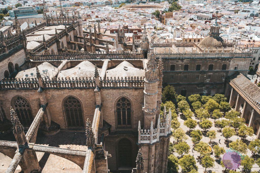 cosas que hacer en sevilla - vista desde La Giralda - Patoneando blog de viajes