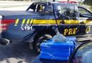 PRF prende homem com quase 20 kg de maconha em fundo falso de veículo. Veja o vídeo