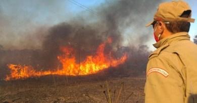 Corpo de Bombeiros lança Operação Queimadas para prevenir incêndios em matas