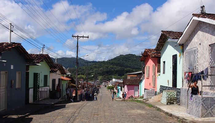 O sul da Bahia | Patricia Cardoso