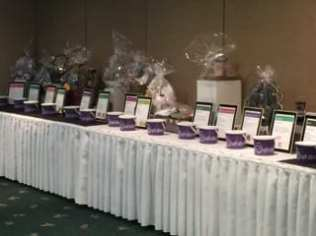 Team Luke March of Dimes Fundraiser