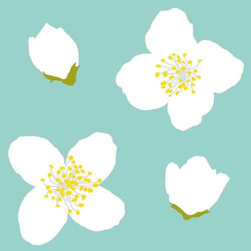 Muster Weiße Kirschblüte
