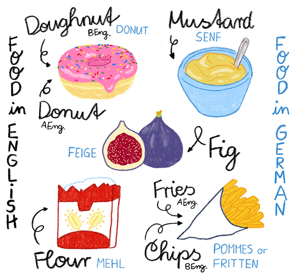 Food in english, Food in german Bildwörterbuch für Kinder