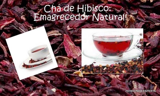 Blog98 - Emagreça com Chá de Hibisco!