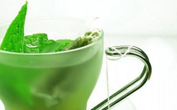 te verde 0 - Estudo da USP Comprova: Chá Verde É Aliado Na Perda De Peso