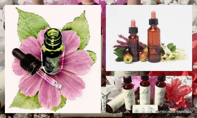 2011 11 071 - Florais Para A Autoestima: Os Melhores