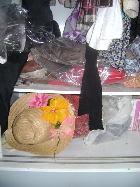 DSC01896 - Organizando o Armário - Porque tá na Moda organizar!!!
