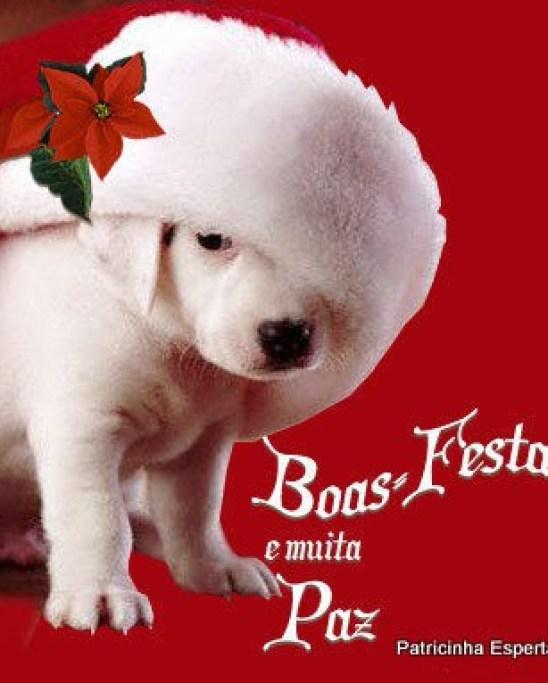 feliz natal mensagens 437766574 0116 - Só Se Vê No Natal ( Pra dar risada!)