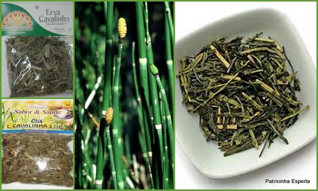 2012 01 17 - Chá de Cavalinha: Um Chá de Beleza e Saúde!