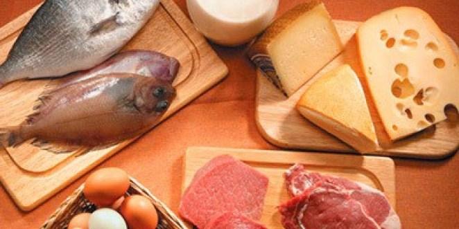 proteinas - Dieta da Proteína