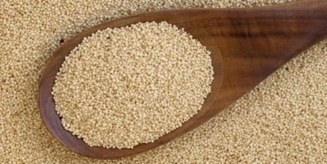 amaranto rico proteina cardapio 11639 - Benefícios do Amaranto