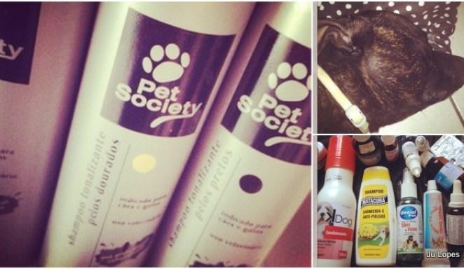 2012 12 251 - Instagram da Semana: Faxina!